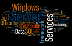 Windows server database web design develop programming