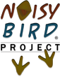 Click to visit Noisy Bird Project Website